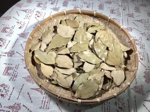 乾燥土肉桂葉